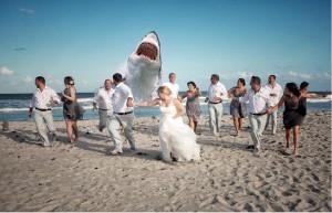 Meg's wedding crasher in Cocoa Beach